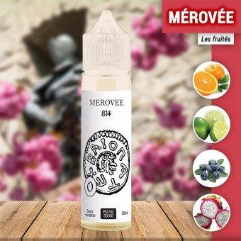 E liquide Mérovée 50 ml - 814