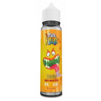 E-liquide Salopiot 50 ml - Multi Freeze - Liquideo
